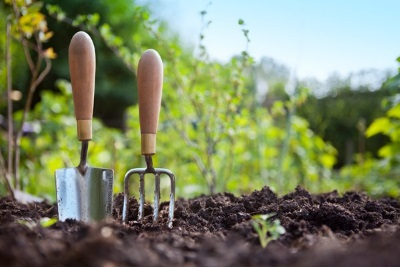 The Right Approach to Your Spring Gardening